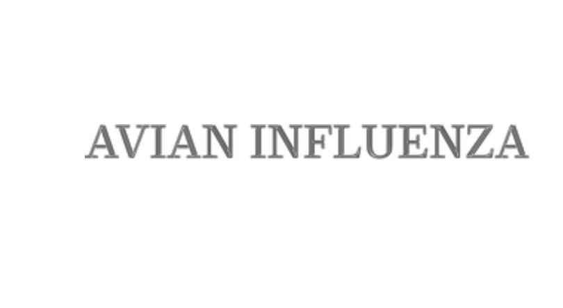 Environmental Surveillance of Avian influenza viruses